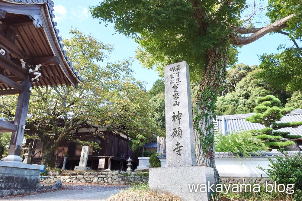 宝来山 神願寺 かつらぎ町