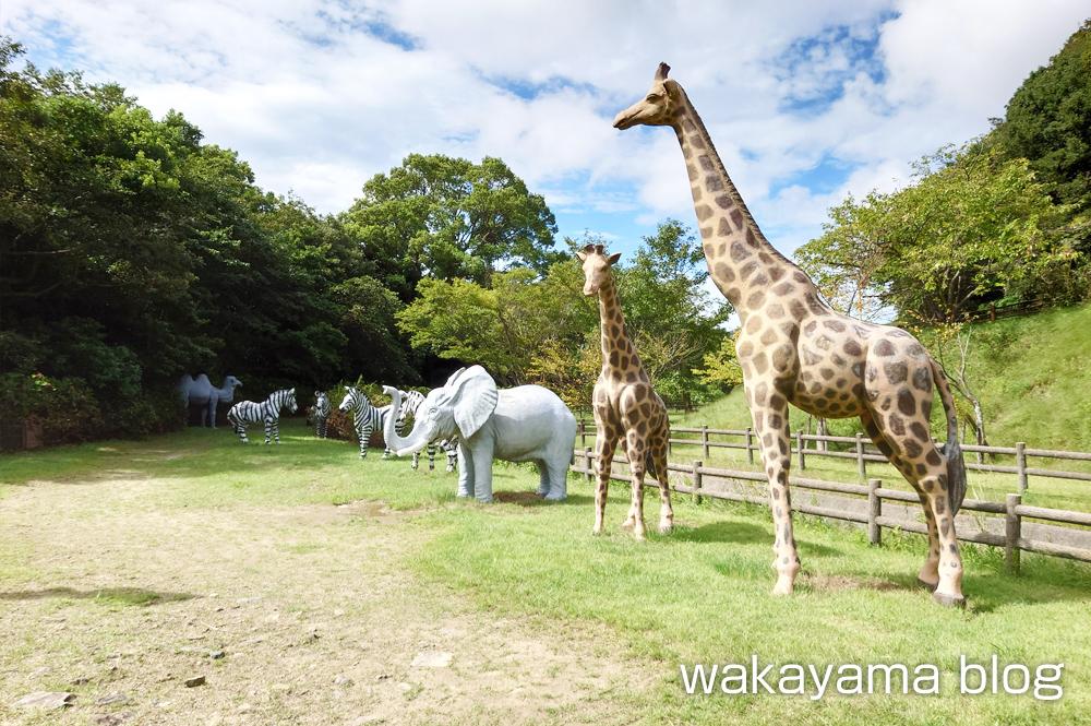 森林公園 和歌山市 動物