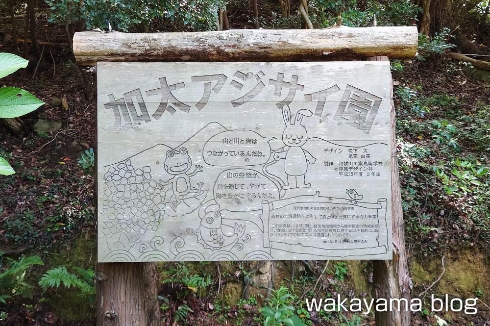 森林公園 和歌山市 加太アジサイ園