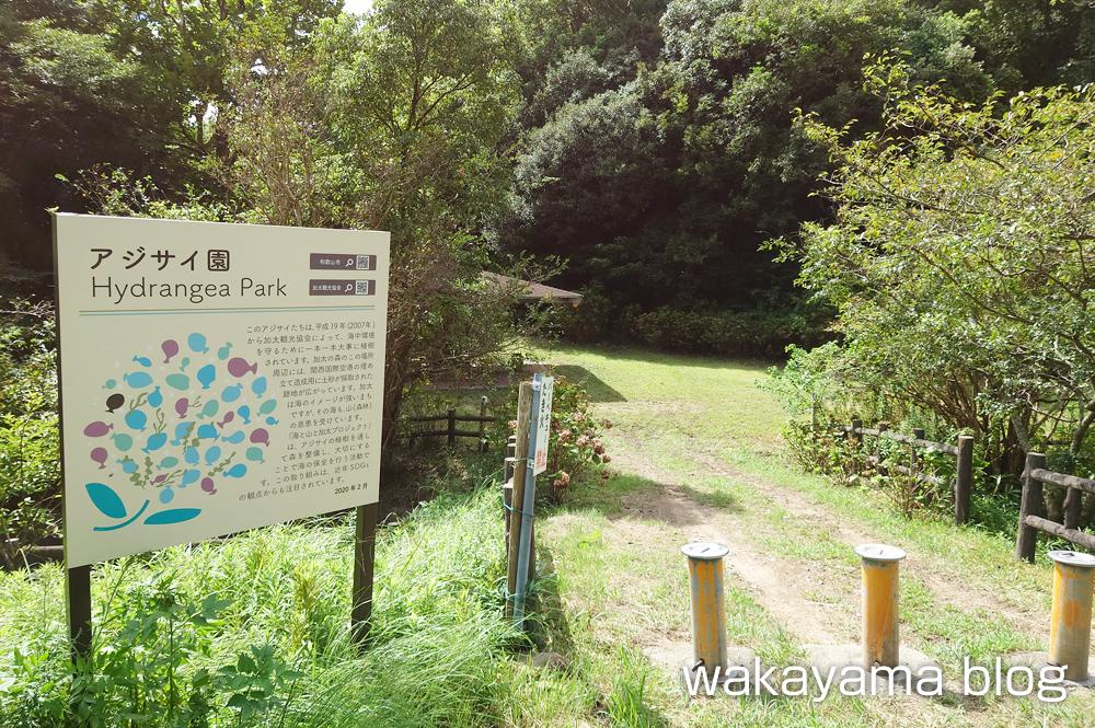 森林公園 和歌山市 加太あじさい園