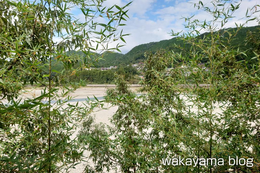 みるりいな 本宮町 熊野川