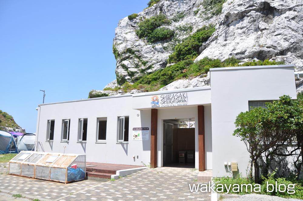 白崎海洋公園 キャンプ場 炊事場